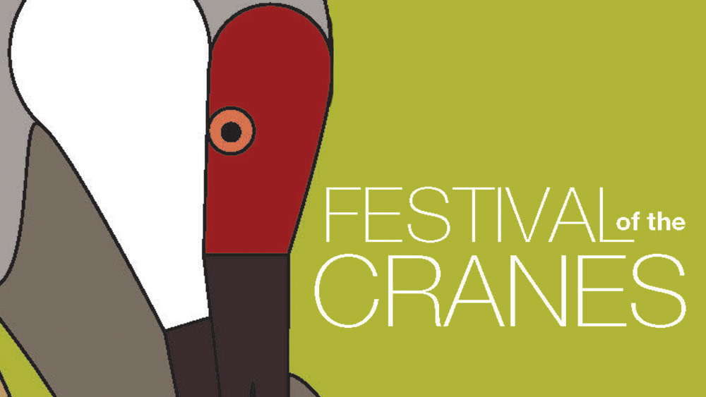 Festival of the Cranes